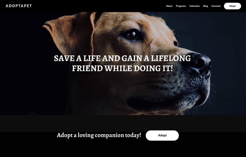nonprofit website for ped adoption