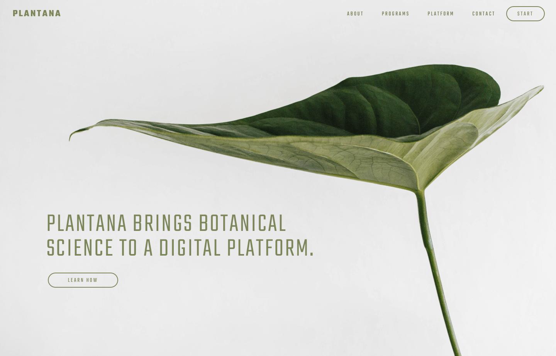 Modular Orange Website for Plantana - plantana brings botanical science to a digital platform