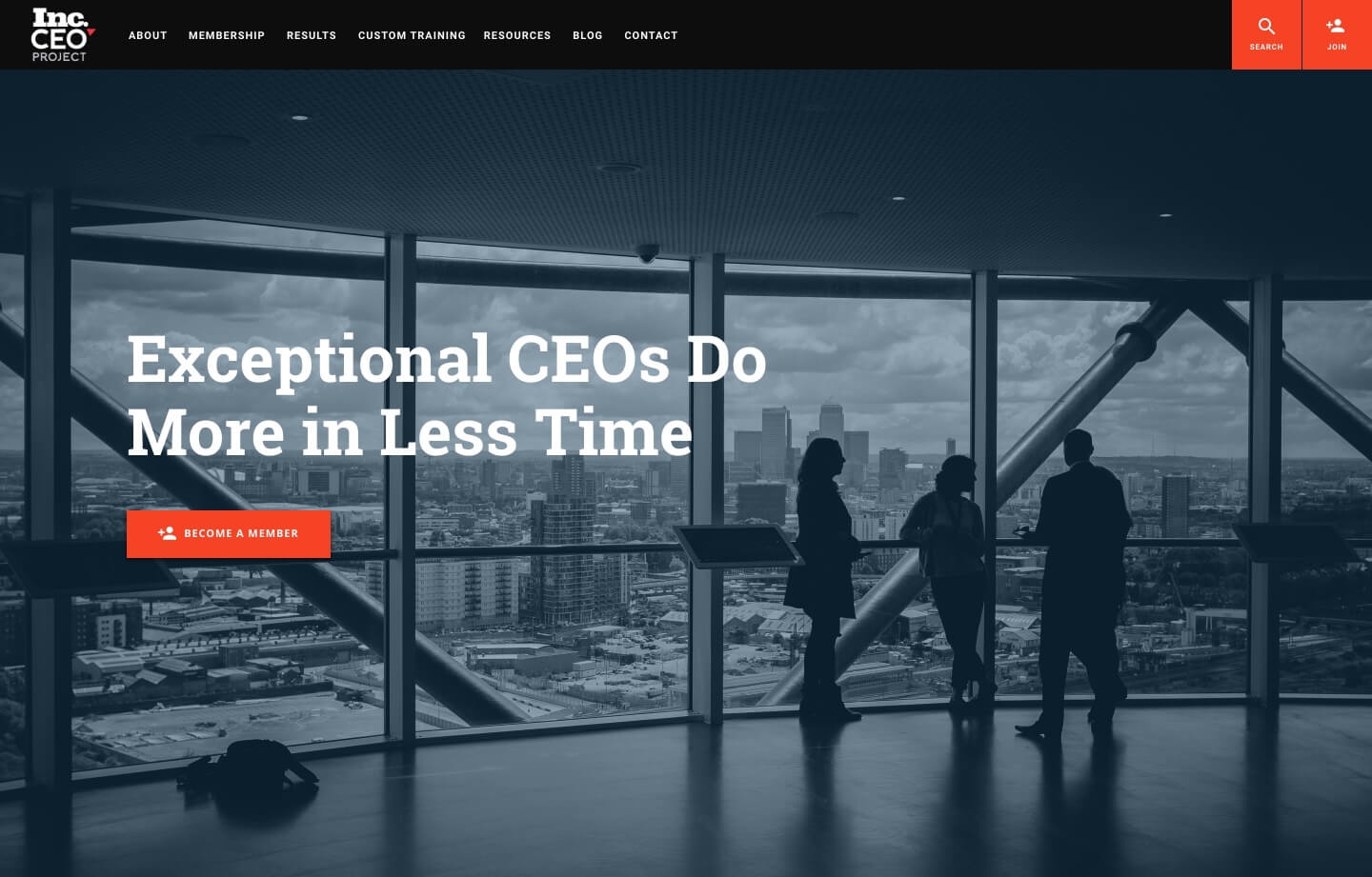 professional services and consultants website for INC Ceo Project